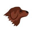 Retriever dog icon flat style vector image