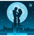 Romantic night on the roof vector image vector image
