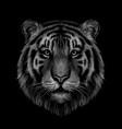 tiger monochrome black and white graphic vector image