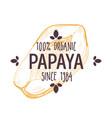 100 percent organic papaya label with sliced vector image vector image