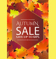 autumn sale poster flyer template vector image vector image