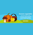 autumn vegetables banner horizontal concept vector image vector image