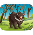black bear in nature scene vector image