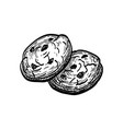 ink sketch chocolate chip cookie vector image