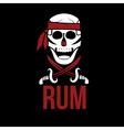 jolly roger rum vector image