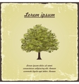 Old tree on vintage paper vector image vector image