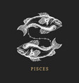 pisces zodiac symbol hand drawn in engraving vector image vector image