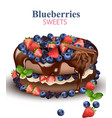 strawberry and blueberries chocolate cake vector image