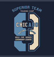 superior team chicago national champion vector image