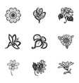 tropical flower icon set simple style vector image