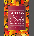 autumn sale poster flyer card template vector image