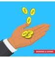 Banking ans saving vector image vector image