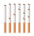 broken cigarettes set smoking kills quit vector image vector image