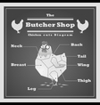 Chicken cuts diagram Butcher shop background vector image