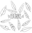 feathers outline hand sketch vector image vector image