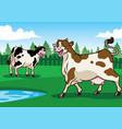 happy cow in the field vector image vector image