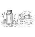 milk cans with grass country vector image vector image