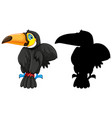 toucan with its silhouette vector image vector image