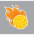 Volleyball isolated team icon vector image vector image