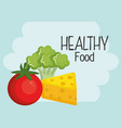 group of vegetables and healthy food vector image vector image