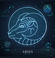 magic card with astrology neon aries zodiac sign