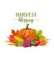 seasonal fall banner vector image vector image