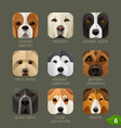 animal faces for app icons-dogs set 5 vector image