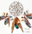 background with dream catcher from feathers vector image
