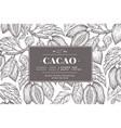 cocoa bean tree banner template chocolate cocoa vector image