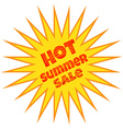 label with the inscription hot summer sale vector image