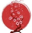 Sakura blossom tree vector image
