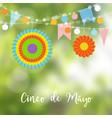 mexican cinco de mayo greeting card invitation vector image