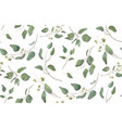 Eucalyptus tree natural branches seamless pattern vector image