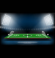 football or soccer playing field sport game vector image vector image