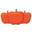 pumpkin icon image vector image