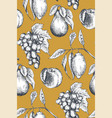 seamless pattern with hand drawn fruits in vector image vector image