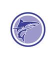 abstract shark logo icon design vector image vector image