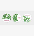 collection round labels with miracle tree or vector image vector image