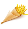 French fries potatoes in vector image