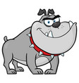 Angry bulldog dog character gray color