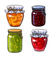 apricot cherry strawberry and kiwi jam vector image vector image