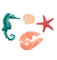 Collection marine life seahorse starfish and seash vector image