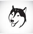 dog siberian husky on white background pet vector image