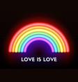 love is love neon rainbow vector image vector image