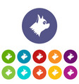 pinscher dog set icons vector image vector image