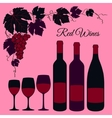 Red wine set vector image vector image