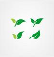 set green leaf icon eco symbol vector image vector image