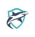 shield shark logo icon vector image