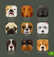 animal faces for app icons-dogs set 2 vector image