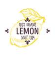 100 percent organic lemon label with whole citrus vector image vector image